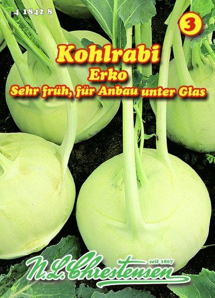 Kohlrabi Erko