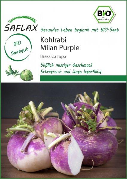 Kohlrabi Milan Purple