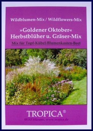 Gräser Mix Goldener Oktober