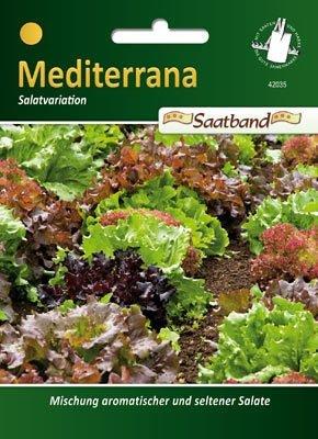 Salat Mediterran 2m Band