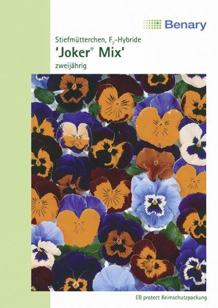 Stiefmütterchen 'Joker® Mix', zweijährig