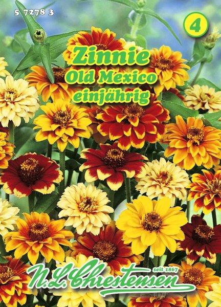 Zinnie Old Mexico