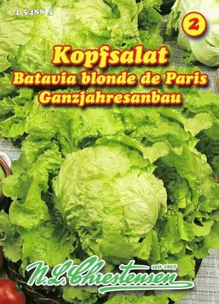 Kopfsalat Batavia blonde de Paris