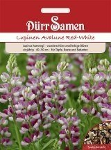 Lupine Avalune Red-White