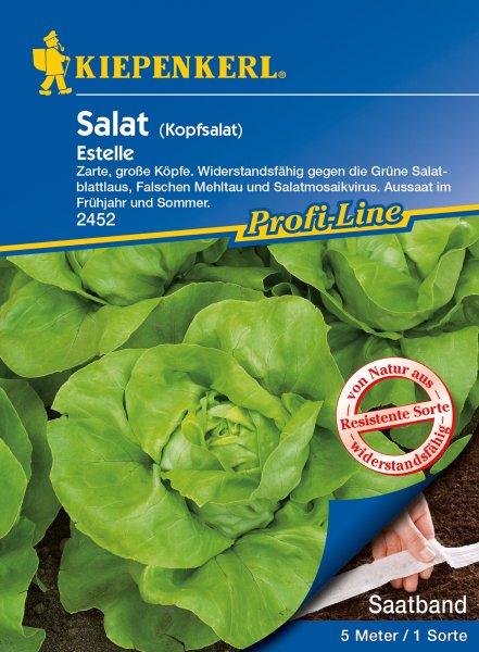 Kopfsalat Estelle Saatband 2 x 2,5m