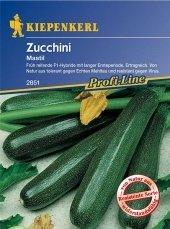 Zucchini Mastil resistent