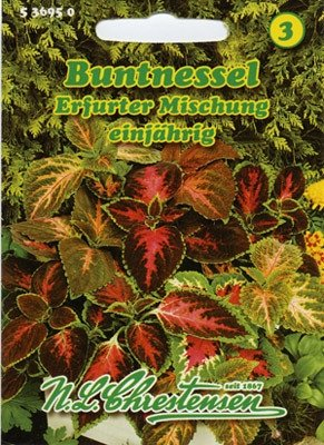 Buntnessel Mix