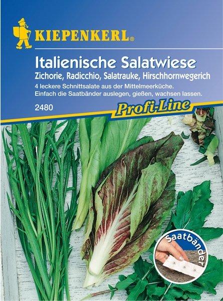 Pflücksalat Ital.Salat 5m Saatb.