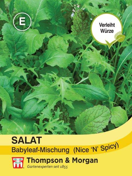 Salat Babyleaf-Mischung Nice n Spicy