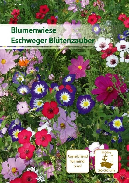 Eschweger Blütenzauber 30m²