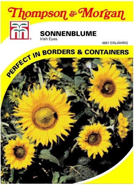 Sonnenblume Irish Eyes ca.45cm