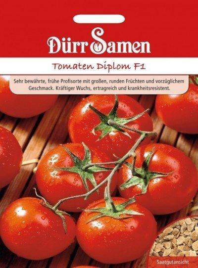 Tomate Diplom
