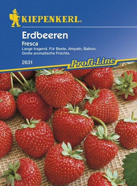 Erdbeere Fresca
