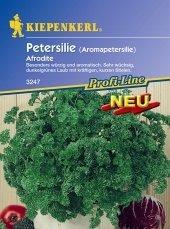 Aromapetersilie 'Afrodite'