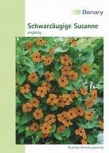 Schwarzäugige Susanne