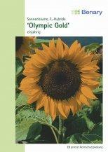 Sonnenblume Olympic Gold ca.140cm