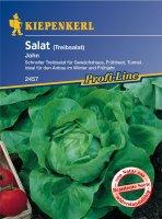 Treib-Kopfsalat John