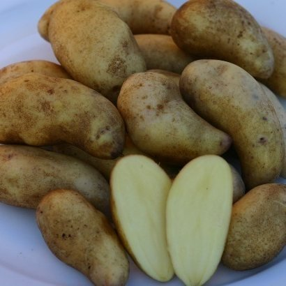 Mandelkartoffel p.Stück
