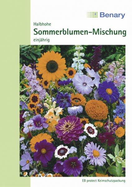 Sommerblumen 60-80cm für ca.2m²