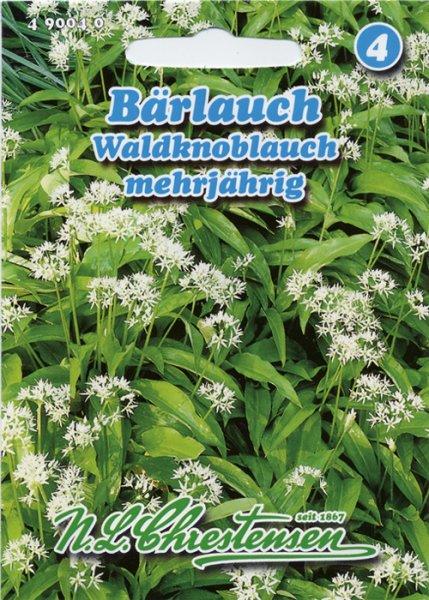 Bärlauch Waldknoblauch