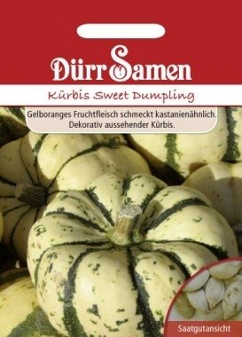 Kürbis Sweet Dumpling