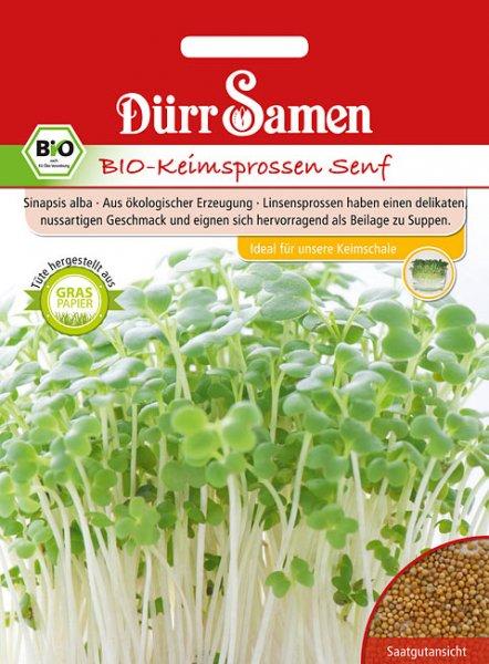 Bio-Keimsprossen Senf 75g