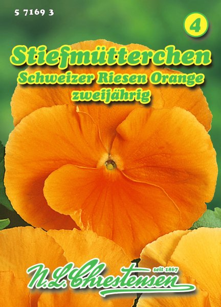 Stiefmütterchen Schweizer Riesen Orange
