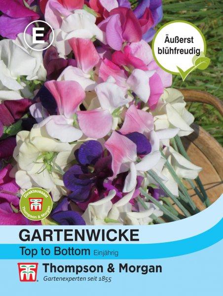 Gartenwicke Top to Bottom