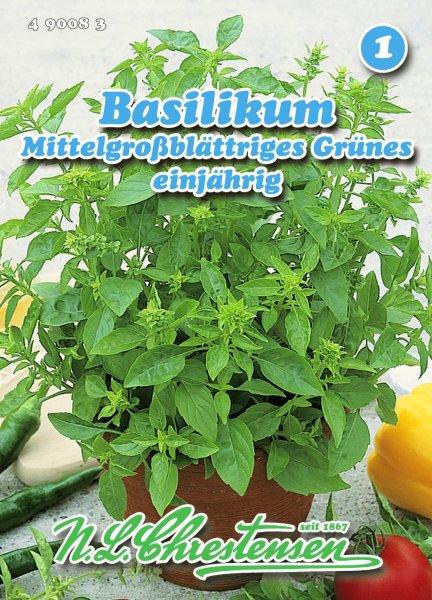 Basilikum Mittelgroßblättriges Grünes