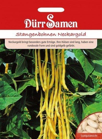 Stangenbohne Neckargold