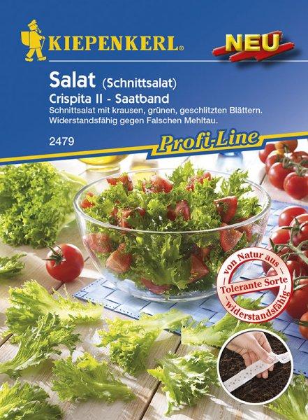 Salat Crispita II Saatband 5m