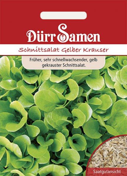 Schnittsalat Gelber Krauser