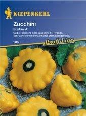 Zucchini Squash Sunburst