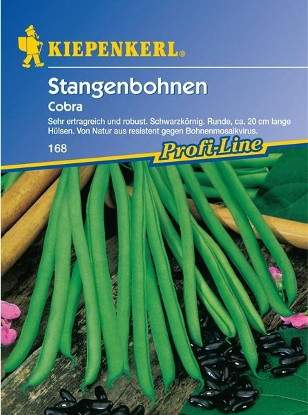 Stangenbohnen Cobra
