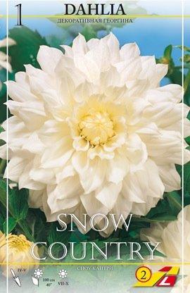 Dahlie Snowcountry 1St.