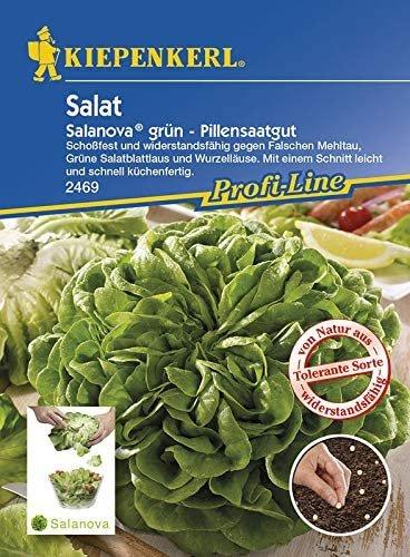 Salat Salanova grün Pillensaat