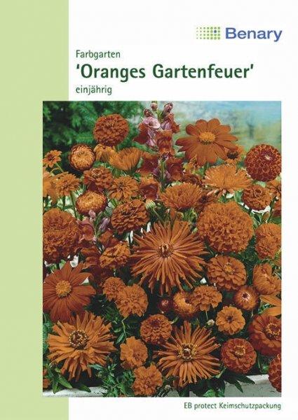 Farbgarten orange