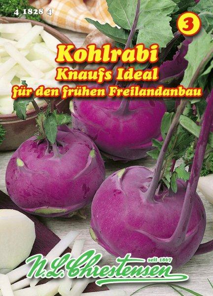 Kohlrabi Knaufs Ideal