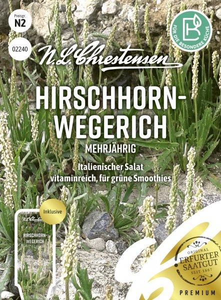 Hirschhornwegerich