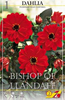 Dahlie Bishop of Llandaff