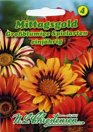 Mittagsgold Großblumige Spielarten