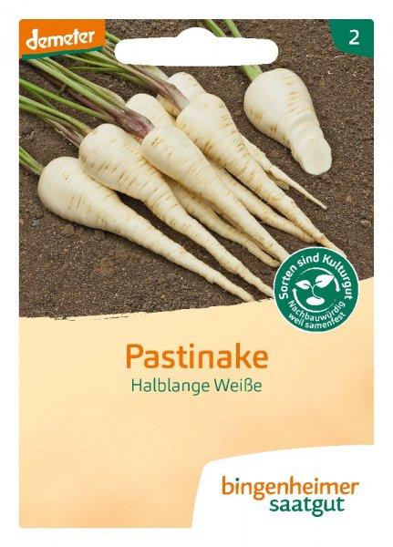Bio-Pastinake Halbl. Weiße