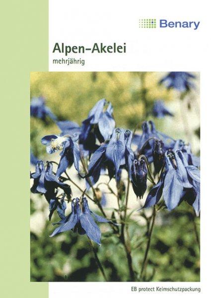 Alpen-Akelei, mehrjährig