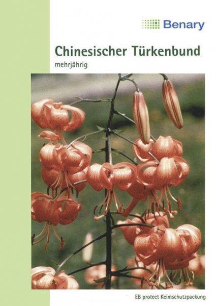 Chinesischer Türkenbund