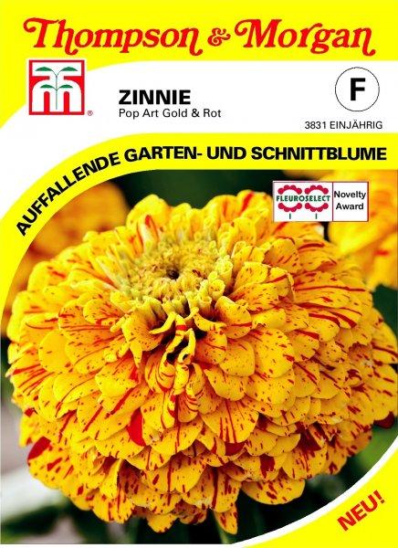 Zinnie Pop Art Gold & Rot