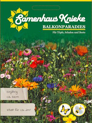 Knieke's Blumenparadies niedrig 50m²