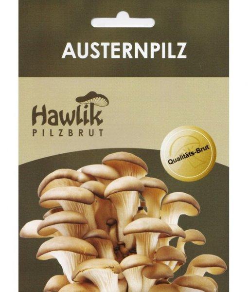 Austernpilz für Stroh/Holz