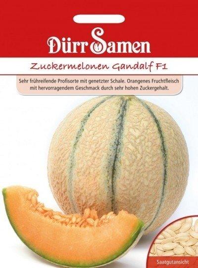 Zuckermelone Gandalf