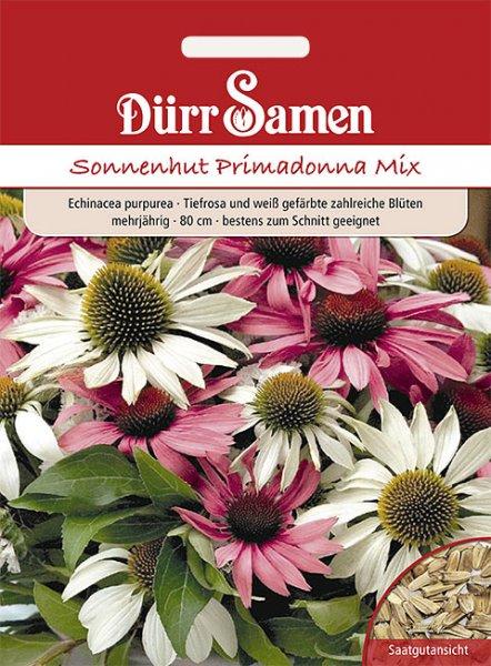Echinacea Primadonna Mix