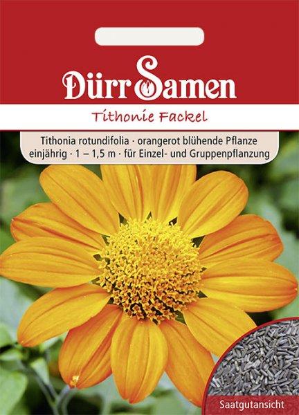 Tithonie Mexikanische Sonnenblume